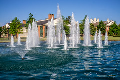 Blue water... (agasfer) Tags: 2019 southcarolina greenville furman sony a6000 7artisans11825mm 7artisans fountains