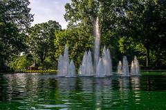 Green water... (agasfer) Tags: 2019 southcarolina greenville furman sony a6000 7artisans11825mm 7artisans fountains