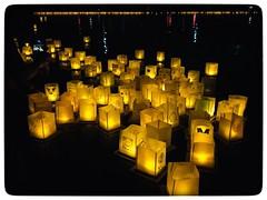 1000 lights Festival (vui.la9) Tags: