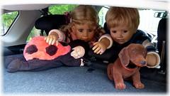 Bärbel und Luis... (ursula.valtiner) Tags: puppe doll luis bärbel künstlerpuppe masterpiecedoll auto car hutablage hatrack hund wackeldackel dog marienkäfer ladybird ladybug