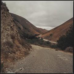 Canyon (ADMurr) Tags: la hasselblad 500cm 80mm zeiss planar full frame mf 6x6 overcast road kodak ektar dad835