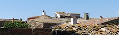 REGENCÓS - TEULATS (Joan Biarnés) Tags: regencós baixempordà empordà girona 318 panasonicfz1000 teulats tejados