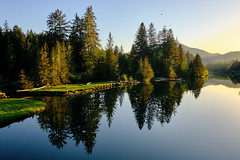 Estuary Sunsets (Tristan Rayner) Tags: vancouverisland portrenfrew trees forests