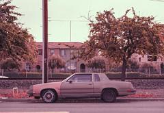 Santa Clara, California (bior) Tags: nikkor50mmf18d nikonf80 35mmfilm fujifilmsensiaii100 sensia sensiaii 50mm santaclara car rustbucket