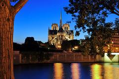 Cathédrale Notre Dame de Paris at blue hour (before the fire ) (natureloving) Tags: cathédralenotredamedeparis notredame paris france monument bluehour nightshot reflections architecture river natureloving nikon d90 nikonafsdxnikkor18300mmf3563gedvr