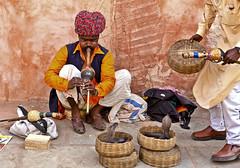 Snake Charmer, New Delhi, India (klauslang99) Tags: klauslang travel photography snake charmer india new delhi streetphotography instrument cultural