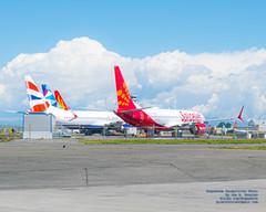 737 Maxs on the Paine Field Tarmac (AvgeekJoe) Tags: 737max boeing737max d5300 dslr kpae nikon nikond5300 painefield snohomishcounty usa washington washingtonstate airport jetliner