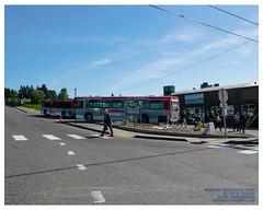 Folks Disembarking Everett Transit Routes 18 and 70 at Mukilteo in Kodak Gold 100 (AvgeekJoe) Tags: d5300 dslr everetttransit mukilteo nikon nikond5300 snohomishcounty usa washington washingtonstate bus publictransit publictransportation