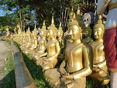 Rustig wachten (Merodema) Tags: club groep wachten buddha goud rij veel many meer punthoofd