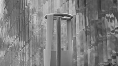 In zwart/wit (Pieter Musterd) Tags: pietermusterd musterd canon pmusterdziggonl nederland holland nl canon5dmarkii canon5d denhaag 'sgravenhage thehague lahaye zuiderpark sokkelplan sportcampus