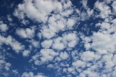 LAINOAK (eitb.eus) Tags: eitbcom 284 g150505 tiemponaturaleza tiempon2019 paisajes gipuzkoa lazkao asierruiz