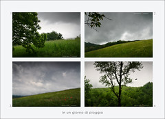 In un giorno di pioggia (GP Camera) Tags: flowers trees primavera grass leaves rain foglie alberi countryside spring branches campagna trunks fiori pioggia fronds rami fronde tronchi nikond80 tamronsp1750mmf28xrdiiild composition lightandshadows shades depthoffield hills textures erba silence fields vignetting cloudysky colline composizione silenzio campi lucieombre sfumature trame profonditàdicampo cielonuvoloso italy bird italia gimp piemonte opensource uccello freesoftware monferrato whiteframe digitalprocessing softwarelibero elaborazionedigitale cornicebianca darktable 4spring