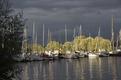 Boote in der Wallufer Bucht - Boats in the Walluf bay (heinrich.hehl) Tags: landschaft fluss rhein boote bäume deutschland hessen rheingau walluf germany trees boats rhineriver river landscape