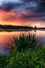 IMG_8947 (Artur Surgał) Tags: polska krainabugu nadbużańskiparkkrajobrazowy wschódsłońca widok krajobraz chmury deszcz rzeka bug canon irixlens poland sunrise landscape scenery river clouds colorful rain nature
