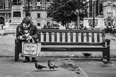 Great Expectations (Leanne Boulton) Tags: urban street candid portrait streetphotography candidstreetphotography candidportrait streetlife streetportrait man male reading book paperback bag slogan juxtaposition feral pigeon bird wildlife animal nature feralpigeon georgesquare bench sitting composition tone texture detail depthoffield bokeh naturallight outdoor light shade city scene human life living humanity society culture lifestyle people canon canon5dmkiii 70mm ef2470mmf28liiusm black white blackwhite bw mono blackandwhite monochrome glasgow scotland uk