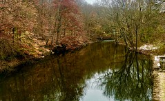 Wickecheoke Creek Preserve (Marianna Gabrielyan) Tags: wickecheoke creek preserve stockton newjersey water river woods trees reflections nature autumn colors outdoor