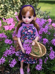 Gathering phlox (Foxy Belle) Tags: pink phlox flower creeping garden doll licca handmade dress tshirt knit recycled sew ooak purple baby clothing 16 scale floral child