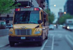 Chicago Yellow School Bus (Jovan Jimenez) Tags: canon eos rebel t2 hasselblad carl zeiss planar 80mm f28 fujifilm superia venus 800 colour neg 35mm film chicago yellow school bus analog analogue bokeh tiltshift miniature street fuji fujicolor 300x kiss7 grain adapter plustek opticfilm 8200i ai
