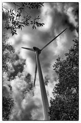 Windrad / Windmill (Dirk Böhling) Tags: monochrome monochrom blackandwhite reportage sky clouds trees