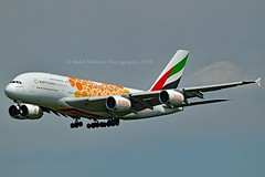 """Emirates Airline A6-EOU Airbus A380-861 cn/205 Painted in """"Expo 2020 (Opportunity / Orange)"""" special colours 07-2018 @ EDDF / FRA 25-05-2019 (Nabil Molinari Photography) Tags: emirates airline a6eou airbus a380861 cn205 painted expo2020opportunityorange special colours 072018 eddf fra 25052019"""