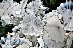 Ethereal White Persian Pond (stavioni) Tags: ethereal white persian pond dale chihuly glass blown sculpture art kew gardens