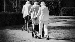 Turn, turn, turn (andzwe) Tags: verpleeghuis wittegedaantes ladies senior rollator walker last turn curve bocht row linedup walking outforawalk white netherlands nederland dutch blackandwhite zwartwit photography rollatorronde rollatortrein tourderollator trio inline optocht