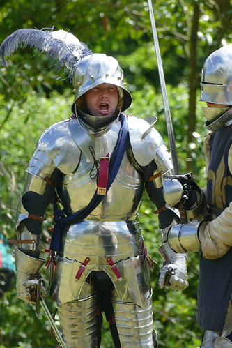 'French' knights in armour
