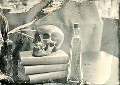 To be or not to be (Rosenthal Photography) Tags: f11 flasche 7min nasplatte bücher anderlingen ferrotypie 13x18 leaslandscape7 vase kollodium 20180403 totenschädel städte tulpe treu tintypie stilleben analog familie dörfer siedlungen stilllife books skull bottle tulips indoor naturallight mood fkd industar 5x7 i51 210mm f45 wetplate collodion tintype aluminotype ilford rapid fixer epson v800
