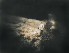 Leaving Darkness Behind (micalngelo) Tags: analog filmphoto infraredfilm rolleiinfrared pinhole pinholecamera pinholephotography largeformatpinhole lomography lomojunkie toycamera toycameraphotography zeroimagepinhole rolleiinfraredfilm