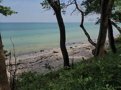 Tropical Als (Landanna) Tags: nørreskoven als sønderjylland zuidjutland denmark denemarken danmark dänemark nature natur natuur skov forest bos strand beach