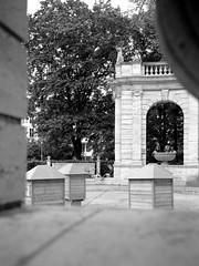 Urban Solitude - Enjoying a Book (ucn) Tags: zeissikondonata2277u tessar135cmf45 volksparkfriedrichshain friedrichshain berlin adoxchs100ii