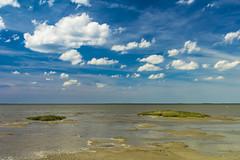 Oosterschelde (Omroep Zeeland) Tags: oosterschelde nationaal park slik rilland zeeland nederland