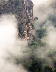 Lone Tree (JoshyWindsor) Tags: travel canonef70300mmf456l atmospheric spain tree agnitravel balearicislands mallorca mist canoneos5dmarkiii rocks landscape europe clouds sacolabra
