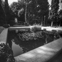 Parque_Montjuich.BCN (manogara2000) Tags: pinhole estenopeica parque de montjuich barcelona
