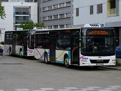 MAN Lion's City M n°6025 & 6028 - Synchro Bus (Chambéry) (Lev. Anthony) Tags: anthonylevrot anthony levrot années2010 2019 régionauvergnerhônealpes régionrhônealpes rhônealpes auvergnerhônealpes mai may 73 73000 chambéry keolis grandchambéry synchro synchrobus bus buses autobus twoaxle twoaxlebus al man manbus manlion's lion's lion'scity city m lion'scitym keolisdrômeardèche drôme ardèche cévennes