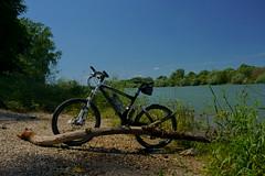 Biketour (Lutz Blohm) Tags: biketour scottgenius40 fahrradtour mountainbike sonyfe24105mmf4goss sonyalpha7aiii rheinufer