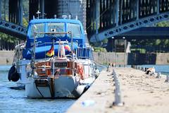 La Meuse (Liège 2019) (LiveFromLiege) Tags: liège luik wallonie belgique architecture liege lüttich liegi lieja belgium europe city visitezliège visitliege urban belgien belgie belgio リエージュ льеж parc de la boverie meuse boat boats bateaux nautique fluvial