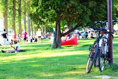 Parc de la Boverie (Liège 2019) (LiveFromLiege) Tags: city urban architecture europe belgium belgique belgie liege luik liège belgien belgio wallonie lieja lüttich liegi リエージュ льеж visitliege visitezliège de la parc boverie