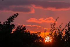 20190602_Sunset in Knowle Park (Damien Walmsley) Tags: knowle sunset sun solihull sunday trees clouds weather june