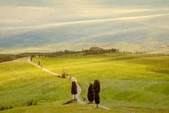 senza titolo (Enzo Ghignoni) Tags: campi luce case cipressi
