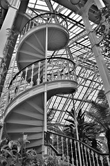 Spiral stair, Temperate House (stavioni) Tags: temperate house kew gardens stair spiral staircase black white