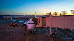 N434AS at the Gate in the Portland Sunrise (AvgeekJoe) Tags: iflyalaska 737990 737990erwl alaskaair alaskaairlines boeing737 boeing737900 boeing737990 boeing737990erwl d5300 dslr jetliners n434as nikon nikond5300 other pdx portlandinternationalairport aircraft airplane airport aviation jetliner plane