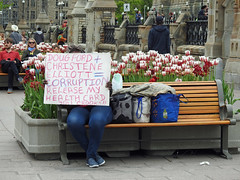 A lone protester against recent cuts to public-health units across Ontario bu Ontario Minister of Health Christine Elliott ax outside the gates of Parliament Hill in Ottawa, Ontario (Ullysses) Tags: ottawa ontario canada spring printemps protest parliamenthillinottawa collineduparlementàottawa parliamenthill streetphotography ontarioministerofhealthchristineelliott ontariopremierdougford