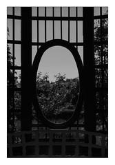 05 [titre l'oeil triste] (Armin Fuchs) Tags: arminfuchs lavillelaplusdangereuse anonymousvisitor thomaslistl wolfiwolf veitshöchheim würzburg hole stripes fujixt3 challenge trees tristesse trist grid