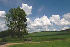 picnic area (Teresa (be there...)) Tags: clouds wolken chmury cumulus himmel sky landscape landschaft krajobraz fields meadow tree baum wiese bench table tisch bank