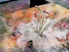 Painterly Lily (scinta1) Tags: lily plant leaves white stamen watercolour colour abstract flower painterly