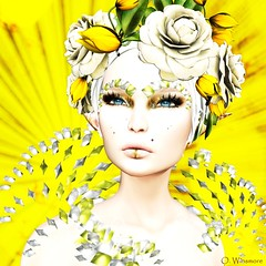 Ain't No Sunshine (Ombrebleue Winsmore) Tags: zibska jewels brows makeup lips shadow collar necklace lode head accessory flowers tulips roses wild tableauvivant hair mesh short blond lelutka bento maitrya body glamaffair skin applier lumipro spot spots projector projectors bulb light lights lighting photograph photography pic picture pictures tool tools swallow elf ears
