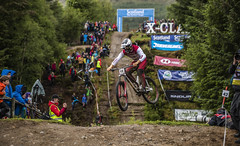 n abc (phunkt.com™) Tags: uci fort william dh downhill down hill mountain bike world cup 2019 scotland race phunkt phunktcom wwwphunktcom keith valentine photos