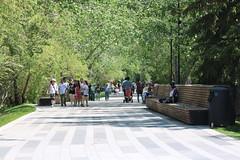 HBM Happy Bench Monday (davebloggs007) Tags: hbm happy bench monday bow valley path way calgary alberta canada