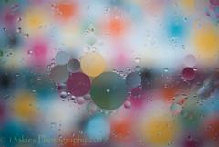 Imprinted Circles (HMM) (13skies) Tags: colours colors circles round light macroscopic macromondays monday sonya100 close hmm theme background shades oilandwater macromonday happymacromonday oil happymacromondays